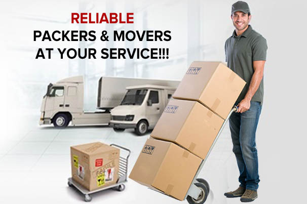 movers packers in araria