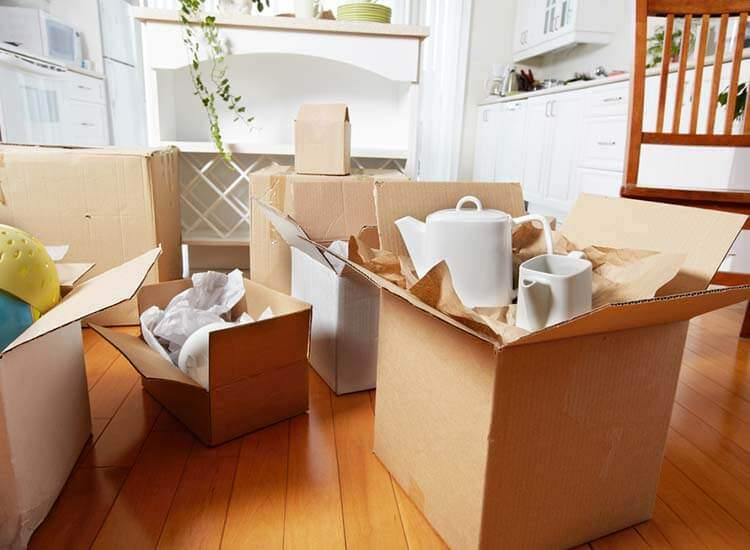 movers packers in darbhanga